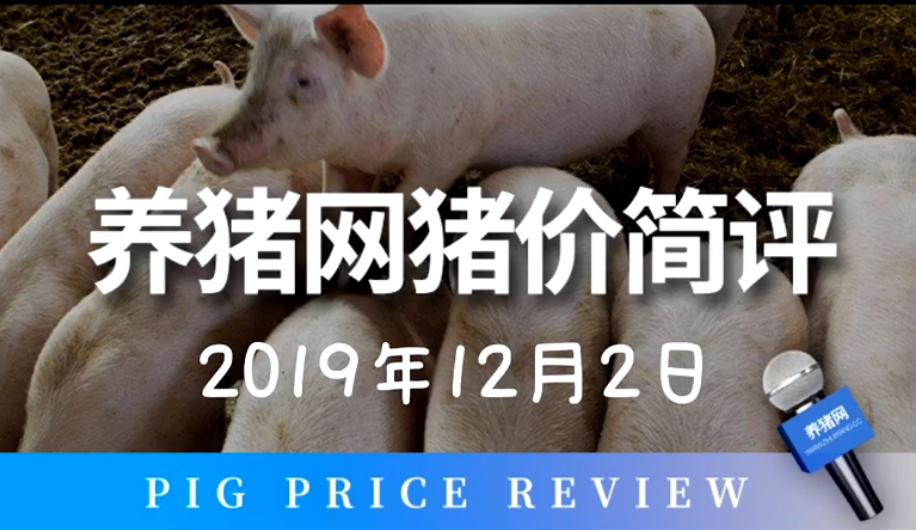 2019年12月2日猪价简评